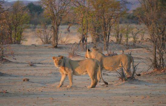Terra di Mezzo Viaggi - Destinazione - Namibia