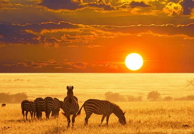 Terra di Mezzo agenzia viaggi varese - - Destinazione - Namibia