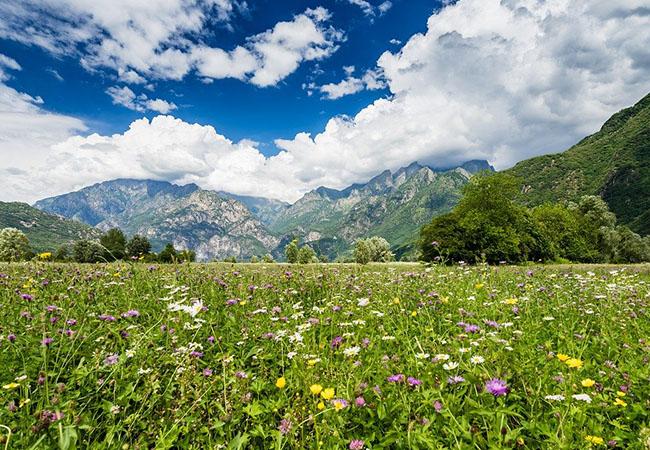 Terra di Mezzo Viaggi - Destinazione - Weekend in Valtellina