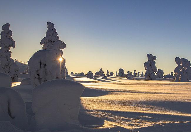 Terra di Mezzo Viaggi - Destinazione - Lapponia