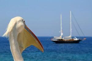 Terra di Mezzo Viaggi - Destinazione - Grecia